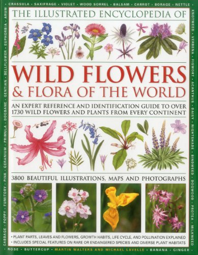 9780754819721: The Illustrated Encyclopedia of Wild Flowers & Flora of the World: An Expert Reference and Identification Guide to over 1730 Wild Flowers and Plants ... Beautiful Illustrations, Maps and Photogr