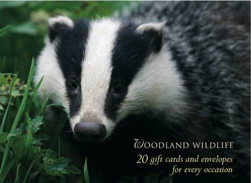 9780754819929: Woodland Wildlife Large Card Box