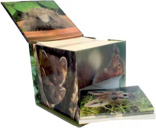 9780754819936: Woodland Wildlife Memo Cube [With 8 Cards and 8 Envelopes]
