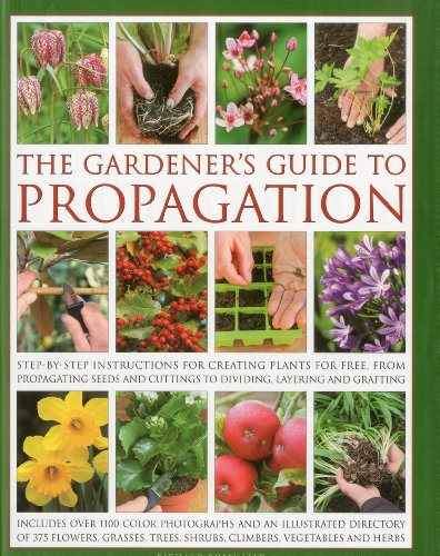 9780754820819: The Gardener's Guide to Propagation: Step-by-step instructions for creating plants for free, from propagating seeds and cuttings to dividing, layering and grafting