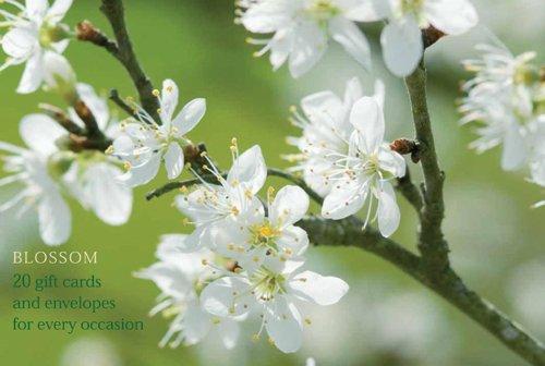 9780754821212: Blossom Gift Card Pack