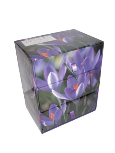 9780754825432: Three-Drawer Card Box 60 Gift Cards and Envelopes: Flower Style: A Keepsake Box of 60 Beautiful Gift Cards and Envelopes