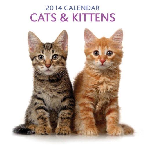 9780754827917: 2014 Calendar: Cats & Kittens: 12-Month Calendar Featuring Delightful Photographs of Cats and Kittens (Calendars)