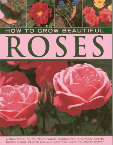 9780754828259: How to Grow Beautiful Roses: A Practical Guide to Growing, Caring for and Maintaining Roses, Shown in Over 275 Glorious Photographs