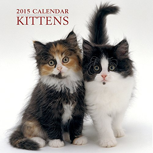 9780754829386: 2015 Calendar: Kittens: 12-Month Calendar Featuring Wonderful Photography and Space in Write in Key Events