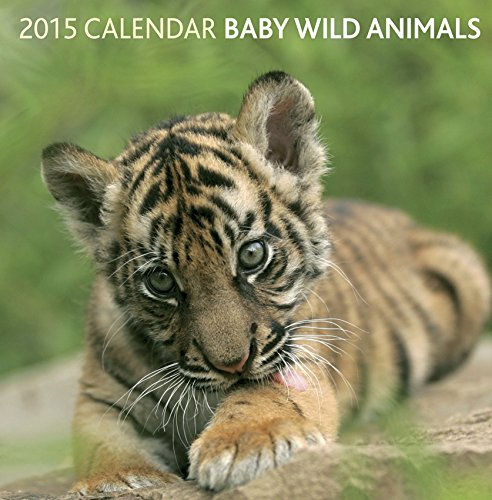 9780754829416: 2015 Calendar: Baby Wild Animals: 12-Month Calendar Featuring Wonderful Photography And Space In Write In Key Events