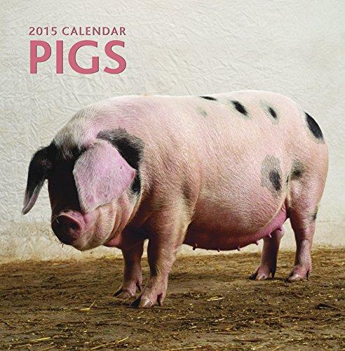 9780754829423: Pigs 2015 Calendar