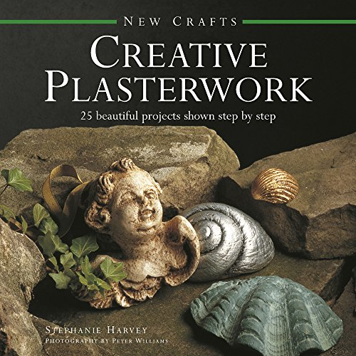 9780754830061: New Crafts: Creative Plasterwork: 25 Beautiful Projects Shown Step By Step