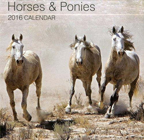 9780754831099: 2016 Calendar: Horses & Ponies