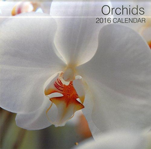 9780754831211: Orchids 2016 Calendar