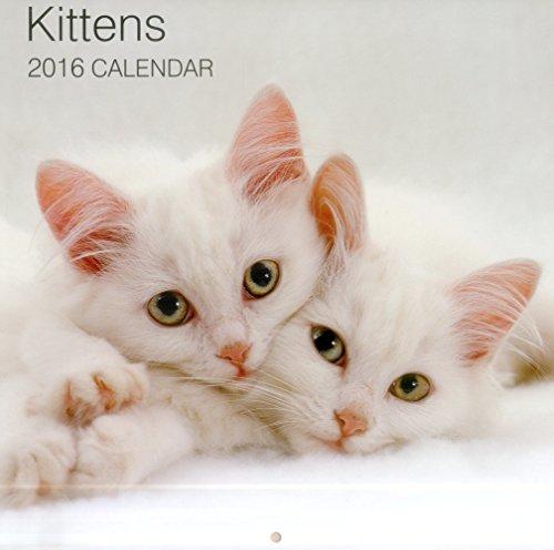 9780754831235: 2016 Calendar: Kittens (Calendars 2016)