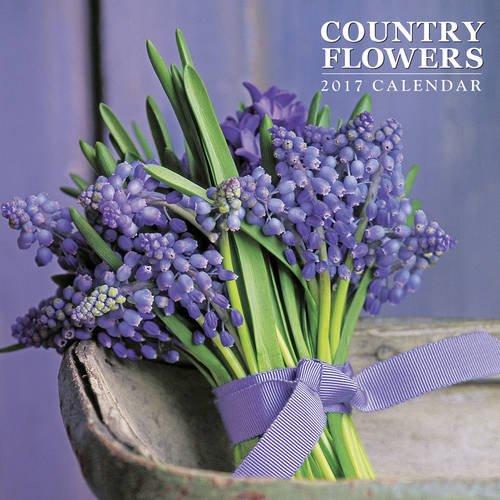 9780754832676: 2017 Calendar: Country Flowers