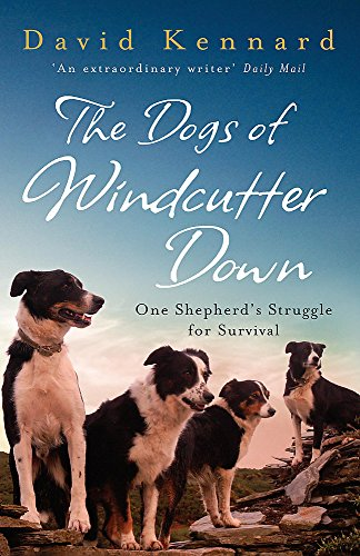 9780755312573: The Dogs of Windcutter Down