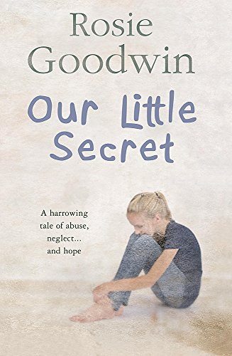 9780755334919: Our Little Secret
