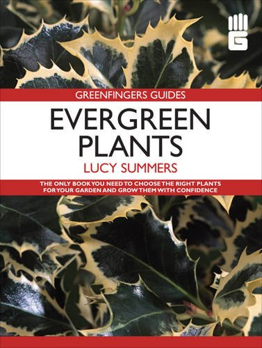Greenfingers Guides: Evergreen Plants: Summers, Lucy