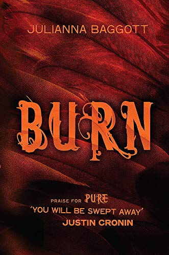 9780755385560: Burn (Prime Trilogy 3)