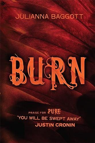 9780755385560: Burn