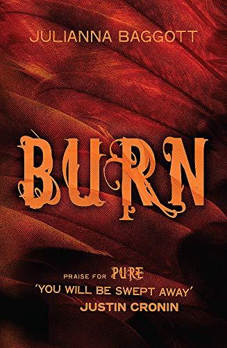 9780755385577: Burn
