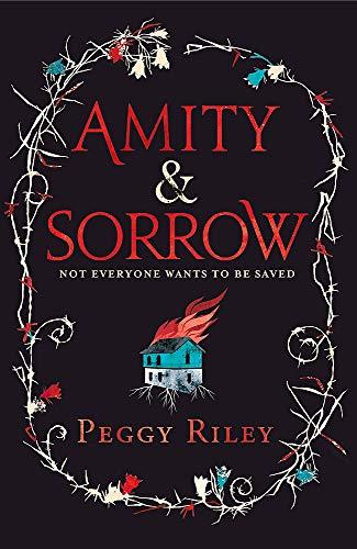 9780755394364: Amity & Sorrow
