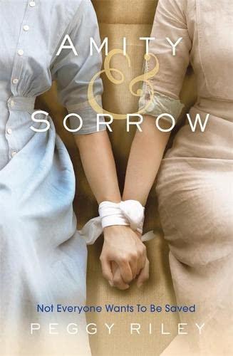 9780755394371: Amity & Sorrow
