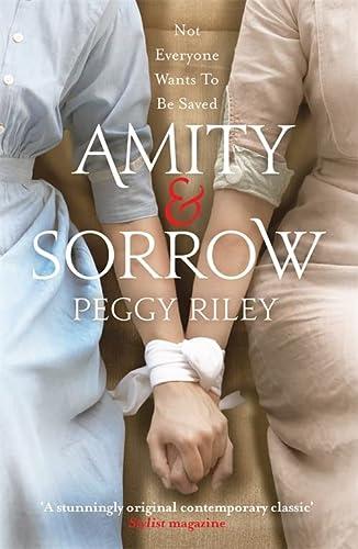 9780755394388: Amity & Sorrow