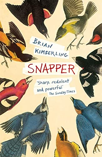 9780755396214: Snapper