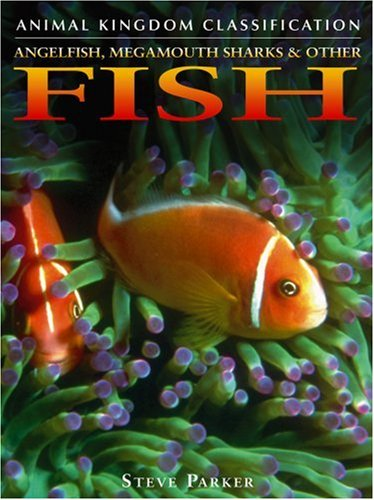 Angelfish, Megamouth Sharks, and Other Fish (Animal Kingdom Classification): Parker, Steve