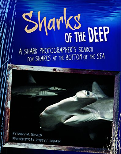 9780756548865: Sharks of the Deep: A Shark Photographer's Search for Sharks at the Bottom of the Sea (Shark Expedition)