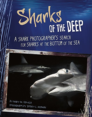 9780756549091: Sharks of the Deep: A Shark Photographer's Search for Sharks at the Bottom of the Sea (Shark Expedition)
