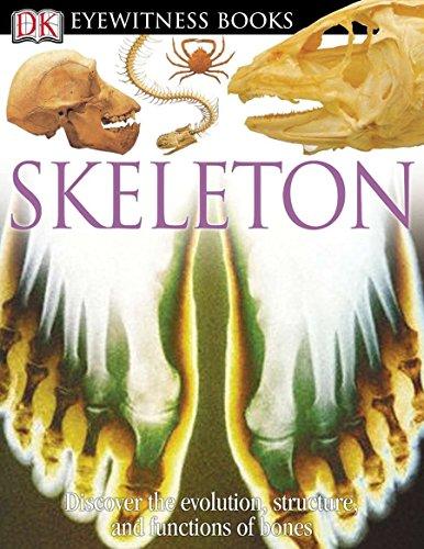 9780756607272: DK Eyewitness Books: Skeleton