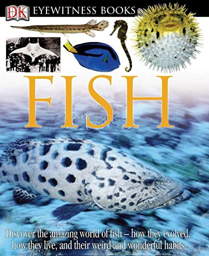 9780756610739: DK Eyewitness Books: Fish