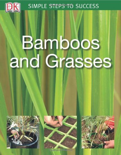 9780756626914: Bamboos and Grasses: Simple Steps to Success