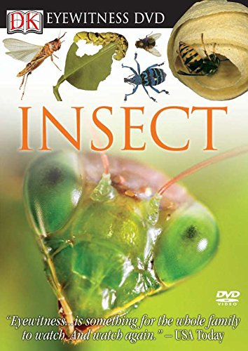 9780756628284: Eyewitness DVD: Insect (Eyewitness Videos)