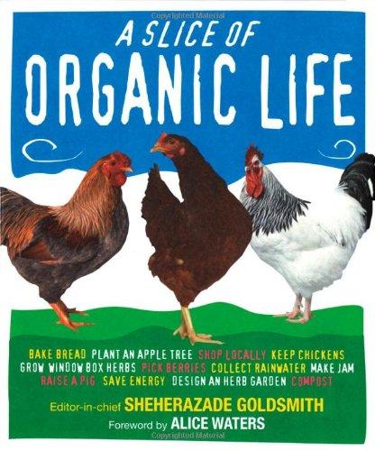 9780756628734: Slice of Organic Life