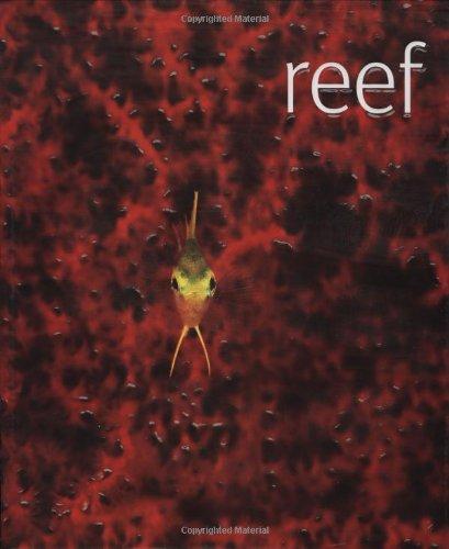 Reef: Scubazoo