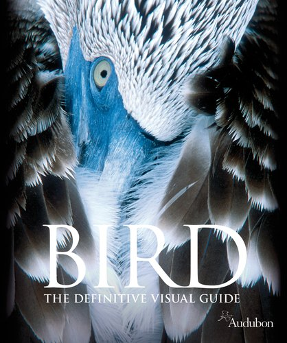 Bird: David Burnie; Ben Hoare; Audobon