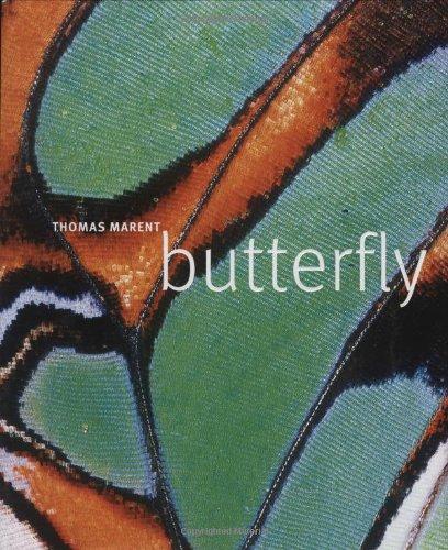 9780756633400: Butterfly