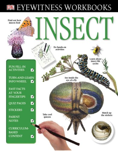9780756638214: Eyewitness Workbooks: Insect (DK Eyewitness Books)