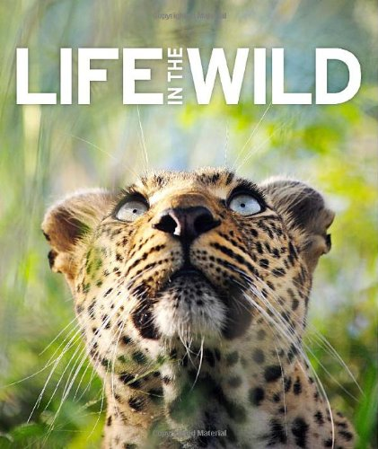 Life in the Wild