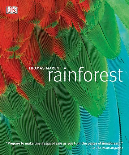 9780756665999: Rainforest