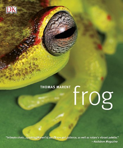 9780756667283: Frog: A Photographic Portrait