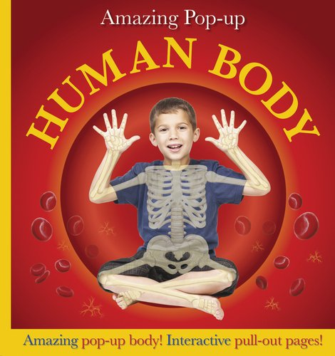 Amazing Pop-up Human Body: DK Publishing