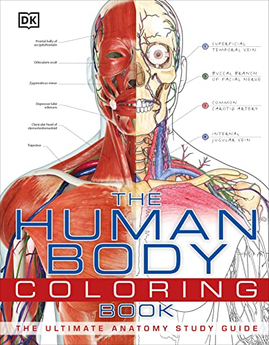 9780756682347: The Human Body Coloring Book
