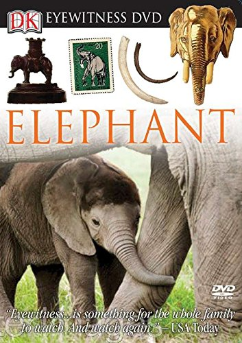 Eyewitness DVD: Elephant (Eyewitness Videos): DK Publishing
