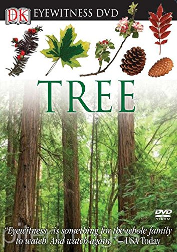 9780756682743: Eyewitness DVD: Tree (Eyewitness Videos)