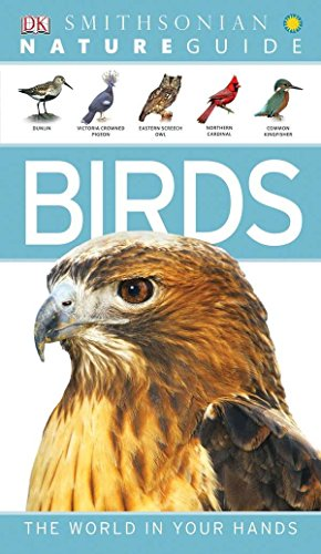 9780756690410: Nature Guide: Birds (Nature Guides)