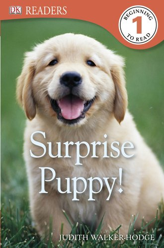 9780756692940: Surprise Puppy! (Dk Readers. Level 1)