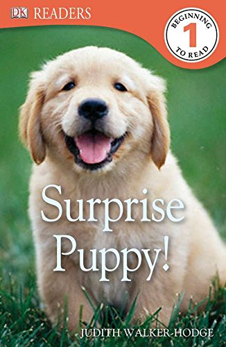 9780756692957: Surprise Puppy! (Dk Readers. Level 1)