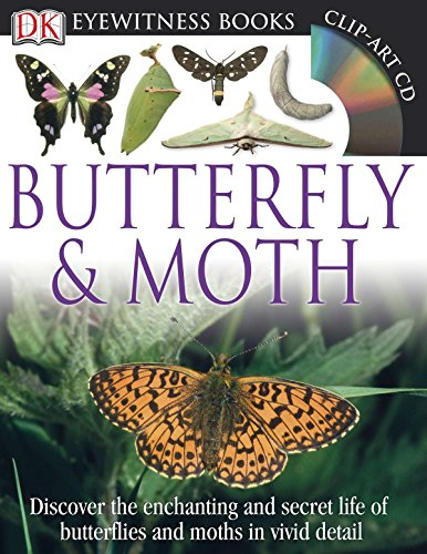 9780756692988: DK Eyewitness Books: Butterfly and Moth
