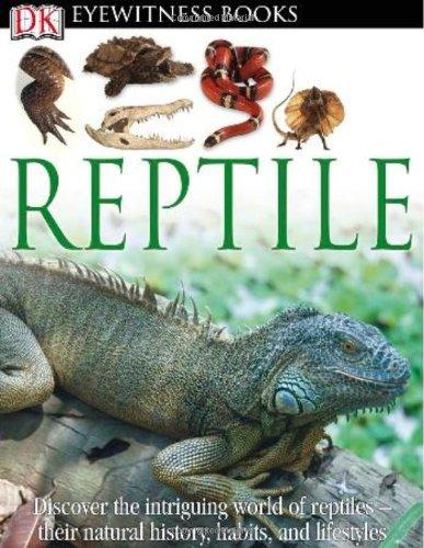 9780756693046: Reptile (DK Eyewitness Books)